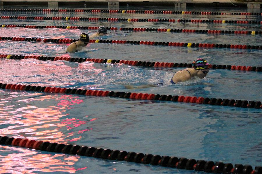 Sophomore Megan Smith swims the 100-yard breaststroke. At the conference meet, Smith took first in this event and missed the state time by .5 seconds.