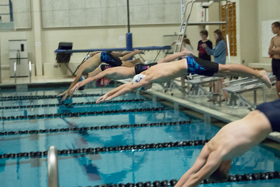 A group of swimmers dive into the water. Most students don't understand how important diving is to the team as a whole.