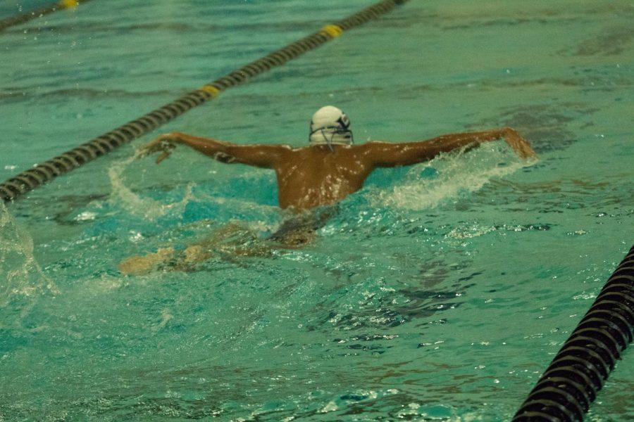 Timberland+defeats+FHC+boys+swim