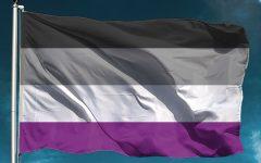 Asexual Representation