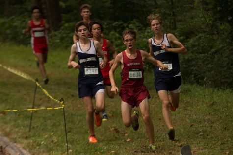 Cross country sets the bar