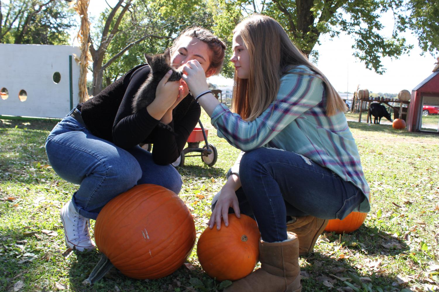 Freshmen Marygrace Cummings and Emma Schultheis look intently at a kitten at a local pumpkin patch. Pumpkin patches are a great way to get together with your friends and have some fun while celebrating the spirit of the season.