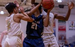 Varsity Boys Basketball Fends Off Holt