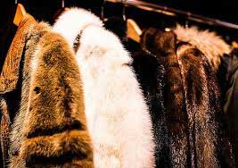 A rack of faux fur coats are being prepared to be worn.