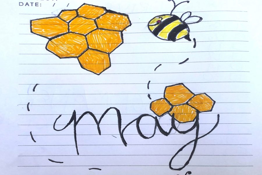 Honey, Honey: this is the May cover page with the bees and honeycombs design