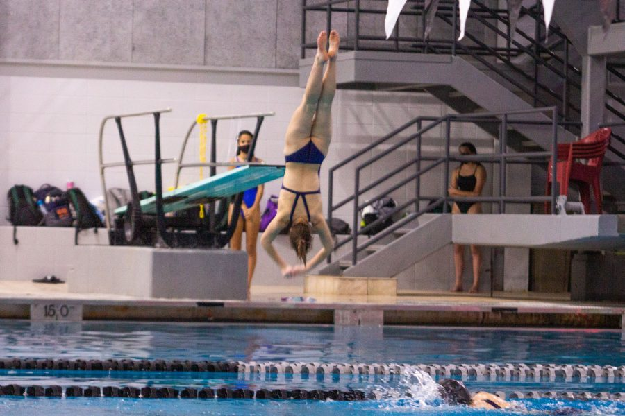 Abigail Wolf perfecting another dive.