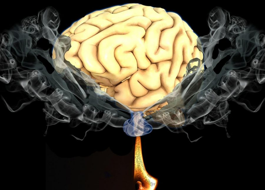 Up in Flames: A match both words that gaslights use on their victims light the brain non fire causing mental fogginess and confusion. Gaslighting is common enough for research and studies on it but, not commonly talked about leading to depression and other harmful side affects of this type of emotional abuse.