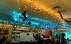 Garlands, lights, and baubles occupy the ceiling of science teacher Mr. Scott Thorpe's room.