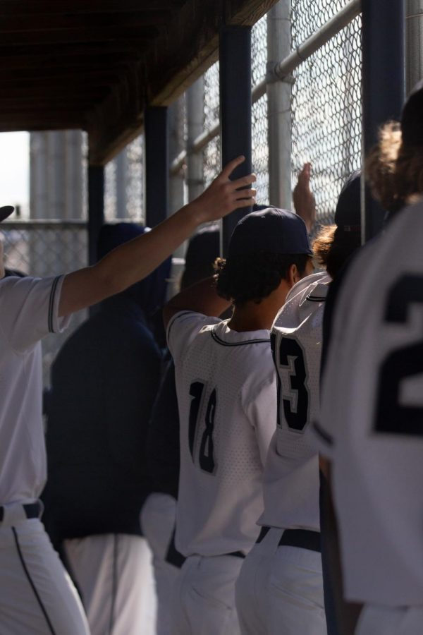 The varsity baseball team stands in the dugout watching as the game progresses.