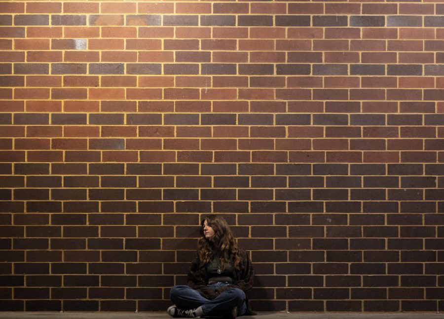 Sophomore Hailey Bennett is leaning against a large brick wall, thinking about life. I took this photo on the wall of Central Elementary School, and I like this photo because of the different levels of lighting and because of how Hailey is still the focus in the shot.